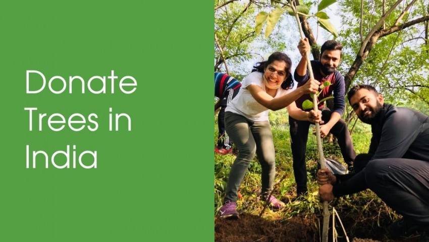 Donate Trees with Nelda in India